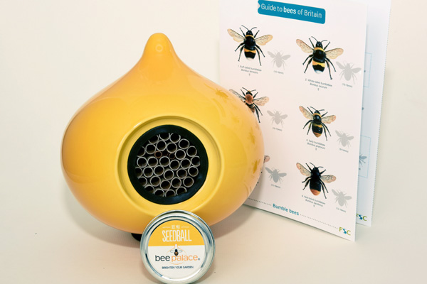 """""""The bees' needs"""""""