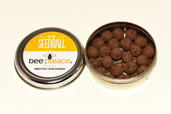beepalace Seedball tins with Seedballs visible in a tin.